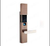 Stainless Steel Biometric Fingerprint Electronic Door Locks pictures & photos
