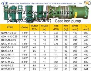 Cast Iron Pump pictures & photos