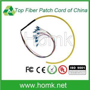 LC Ribbon Bundle Patch Cord Single Mode Simple pictures & photos