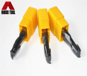 China HRC45 Solid Carbide 2flutes Metal End Mills pictures & photos
