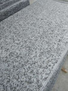 Discount Deck/Subway/Bathroom/Kitchen/Floor/Backsplash/Bullnose/Paving G439 Big White Flower  Unpolished Granite Slabs