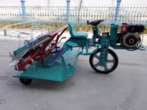 2016 Year New Design with Attractive Price Factory Direct Supply Walking Rice Transplanter pictures & photos