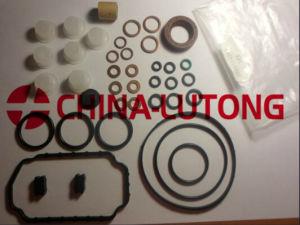 Ve Pump Rebuild Kits-Pump Gasket OEM 1 467 010 520 pictures & photos