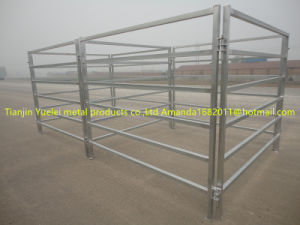 Galvanized Horse/ Cow Iron Fence Panel pictures & photos