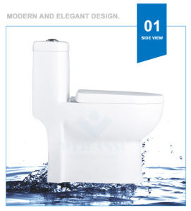 Weidansi Ceramic Wash Down S-Trap One Piece Toilet (WDS-T6113) pictures & photos
