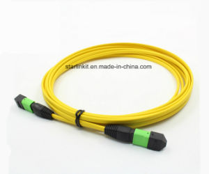5m 10g Om4 50/125 Multimode MPO/MTP Optical Fiber Trunk Cable pictures & photos