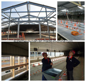 Prefabricated Steel Poultry House Design and Construction pictures & photos