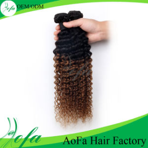 Natural Black Human Remy Soft Bouncy Double Weft Brazilian Kinky Curly Human Hair pictures & photos
