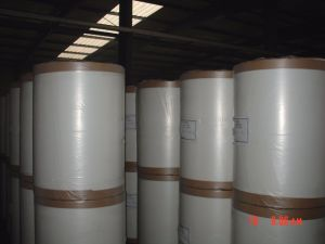 Fiberglass Surface Tissue, Surface Veil S-Sm60g pictures & photos