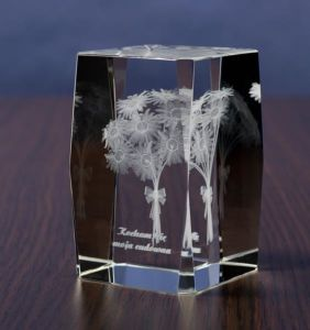 Champion Crystal Cube with 3D Laser Engraving pictures & photos