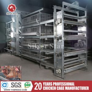 Latest Design Bird Cages Layers Poultry Farming Equipment pictures & photos