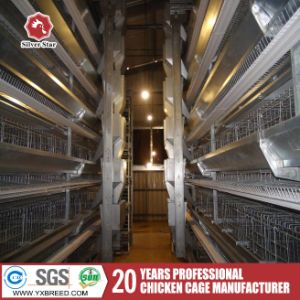 Top Sale New Design Galvanized Layer/Broiler Chicken Cages for Kenya pictures & photos