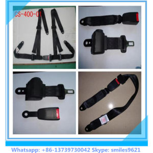 High Quanlity Two-Point Car Safety Belt pictures & photos