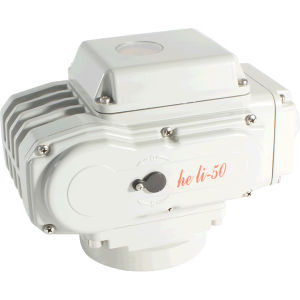 Electric Valve Actuator Hl-50 pictures & photos
