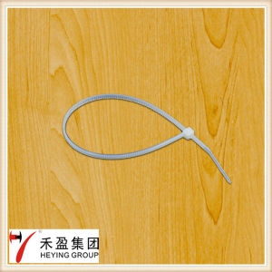 Disposal Plastic Cable Tie Binding Nylon Cable Tie pictures & photos