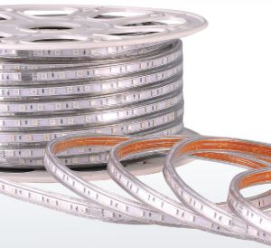 LED Strip 230V 110V SMD Lights LED Strip Light pictures & photos