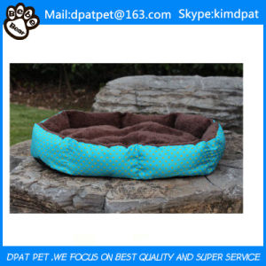 Design Dog Bed pictures & photos