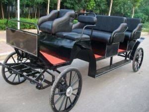Tourist Horse Cart with 8 Seats Front View (GW-HC023-1) pictures & photos