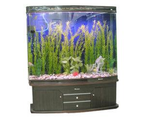 Aquariums/Fish Tank Frame Aluminum