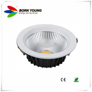 LED Down Light, COB LED Downlight, LED Spotlight, 30W CE&RoHS pictures & photos