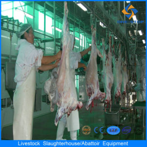 Automatic Sheep & Goat Meat Cutting Machine pictures & photos