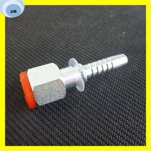 Bsp Female 60 Degree Cone O-Ring Hydraulic Fittings pictures & photos