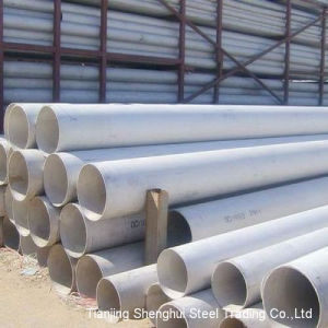 Best Price of Stainless Steel Pipe/Tube (201) pictures & photos