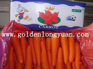 2016 New Crop Fresh Carrot pictures & photos