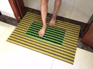 Wholesale Anti-Slip Residential Entrance Welcome Foot Carpet Door Mats pictures & photos
