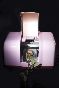 Hot Selling Flower Printer pictures & photos