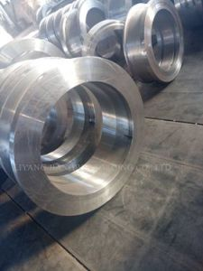 Forged Ring Die for Wood/Feed Pellet Mill/ Machine
