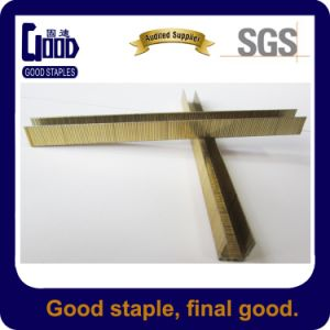 84 Series 21gauge U Staples (8414)