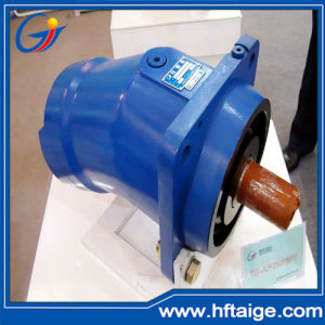China Hydraulic Motor For Industrial And Offshore