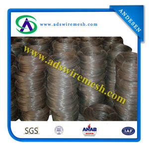 Soft Black Iron Wire Soft Binding Wire pictures & photos