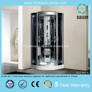 High Quality Coated Mirror Back Glass Steam Shower Cabin (BLS-9837A) pictures & photos