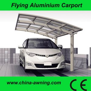 Strong Aluminum Carport with Different Sizes and Any Color (F9100)