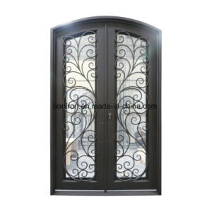 Entry Doors with Wrought Iron and Scroll Work pictures & photos