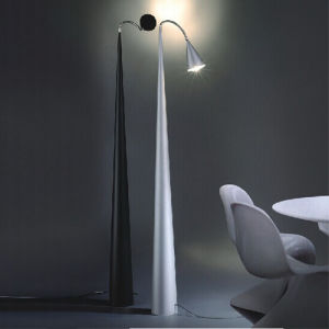 Two Color Modern Standing Lamp, Desk Light Lamp pictures & photos