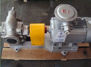 KCB Gear Oil Pump for Crude Oil pictures & photos