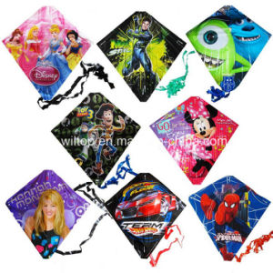 Plastic Funny Kites with Printing (TY004) pictures & photos