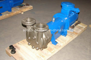 Single Stage Water Ring Vacuum Pump (2BV6110, stainless steel)
