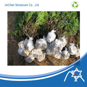 Root Control Non Woven Bag Jinchen 08-140 pictures & photos
