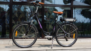 Beautiful En15194 250W Woman Electric Bicycle China for Sale pictures & photos