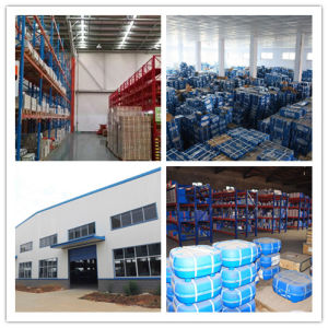 Deep Groove Ball Bearing Kaydon 6205 NACHI China Factory pictures & photos