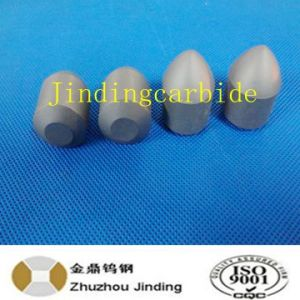 Tungsten Carbide Button for Mining Tools pictures & photos