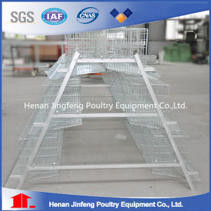 Stainless Steel Galvanized Bird Chicken Layer Cage for Sale pictures & photos