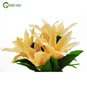 Cheaper Artificial Flower Bush with 7 Heads pictures & photos