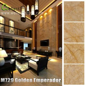 Natural Marble Golden Emperador Marble for Flooring/Floor/Wall Decor Tile pictures & photos