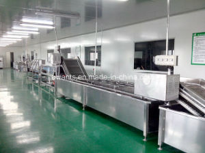 Ce Certification Washing and Drying Machine for Vegetable pictures & photos