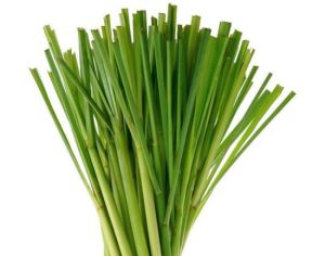Pure Natural Lemongrass Essential Oil Factory Price pictures & photos